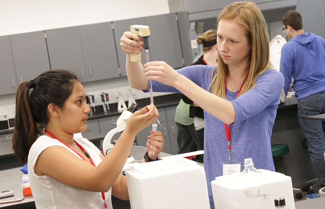 Exploring the possibilities of regenerative medicine