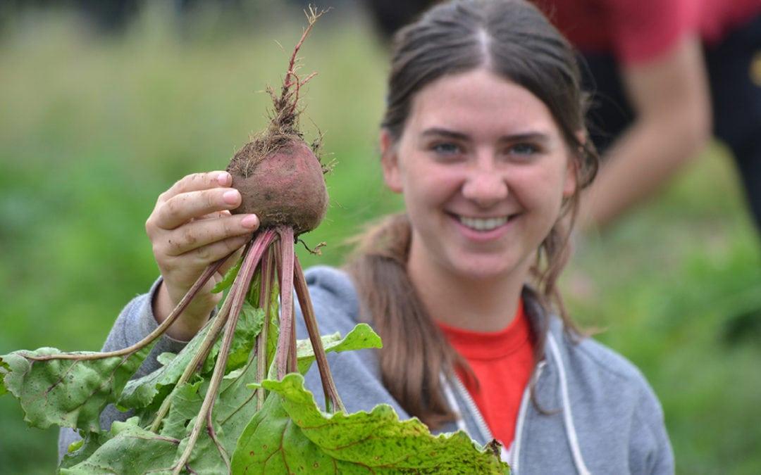 Planting seeds of service through community garden