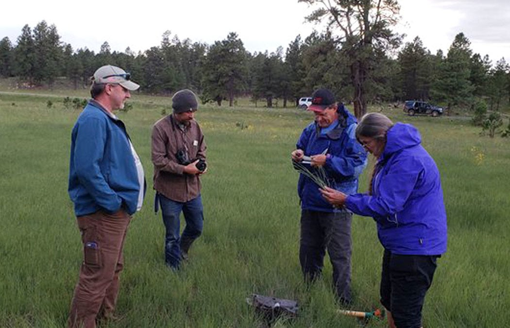 GeoSpatial Services visits New Mexico for wetland mapping fieldwork
