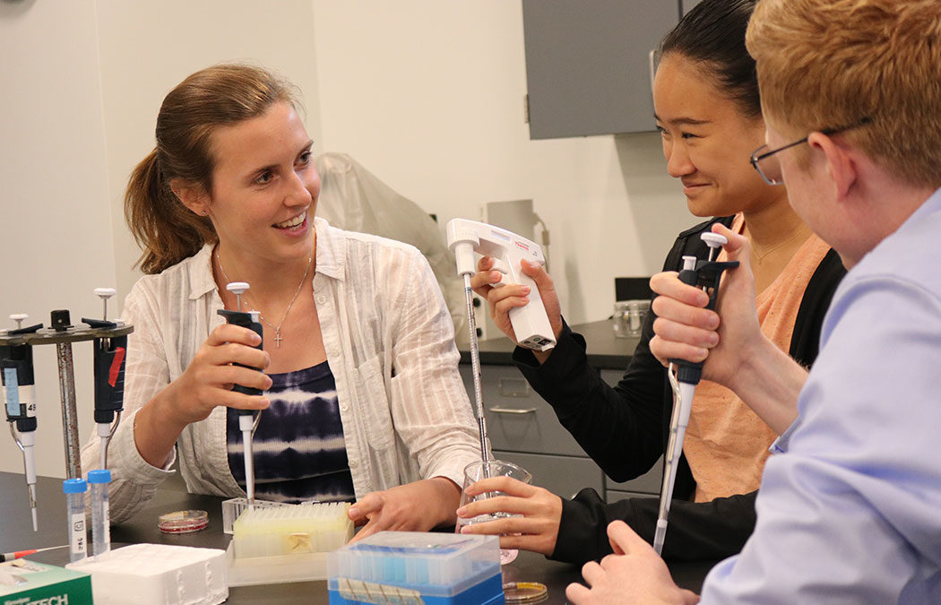 Regenerative medicine workshop provides eye-opening experience