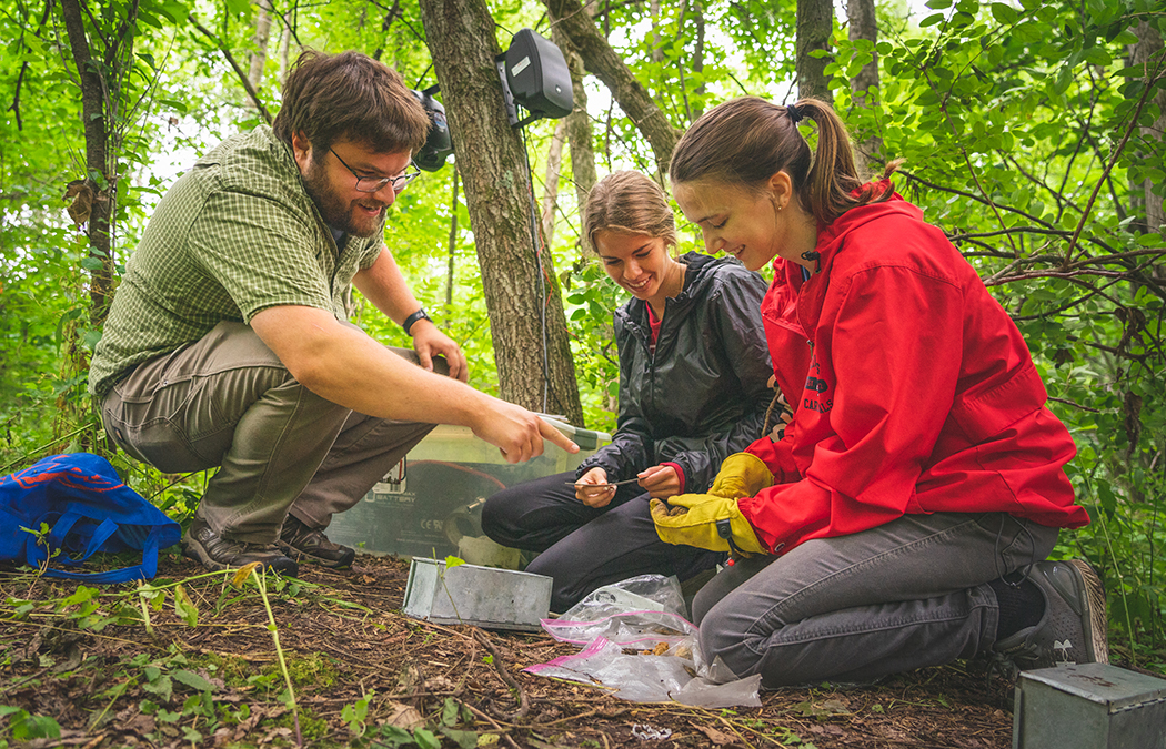 Biology students focus on understudied area of ecology for senior projects